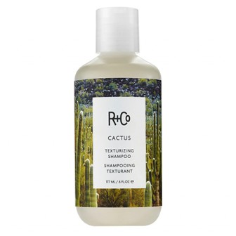 R+Co Cactus texturizing shampoo 177ml